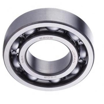 Deep Groove Ball Bearing 6204 for CNC Digital Cutting Machine